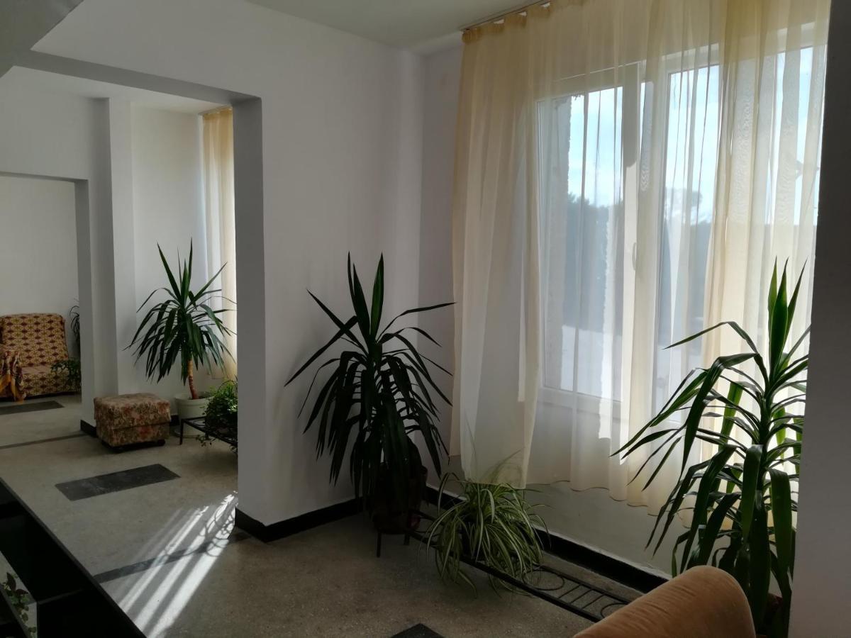 Hostel Shabla