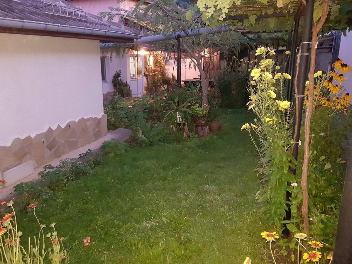 Nenkovi Guest house