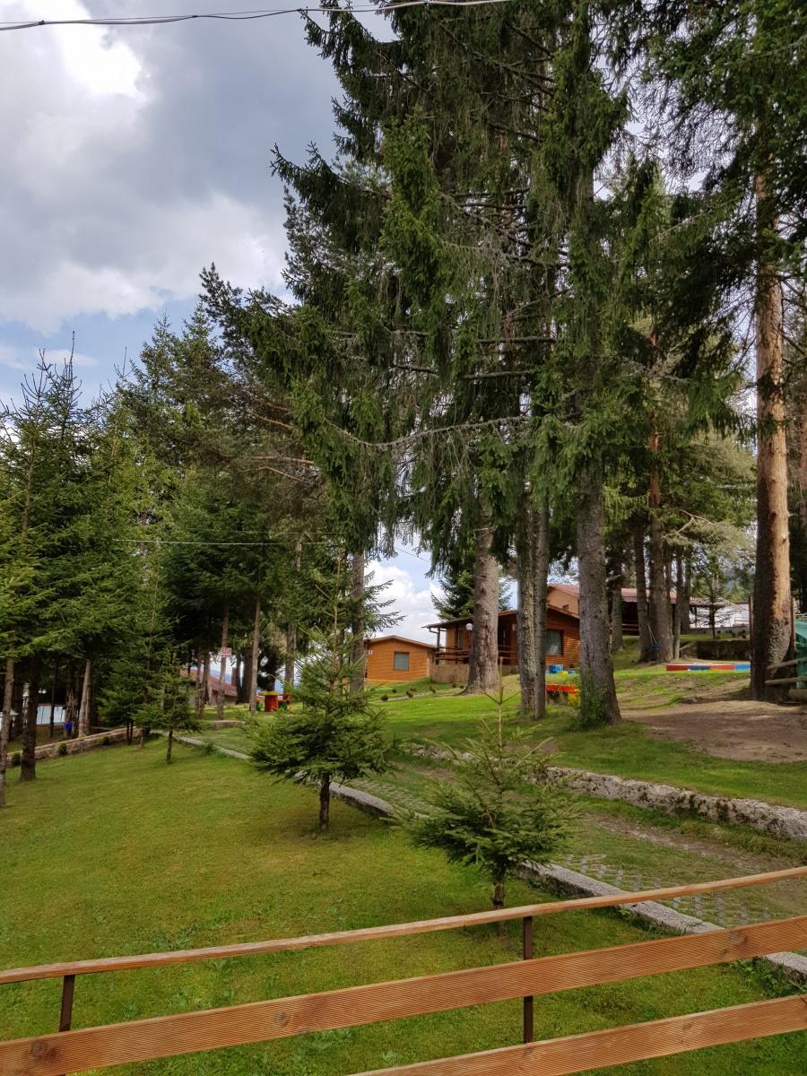 Вилно селище Ива