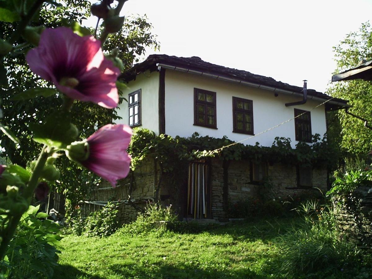 Павльовите къщи