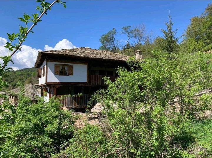 Кюпова къща / Q.pova house